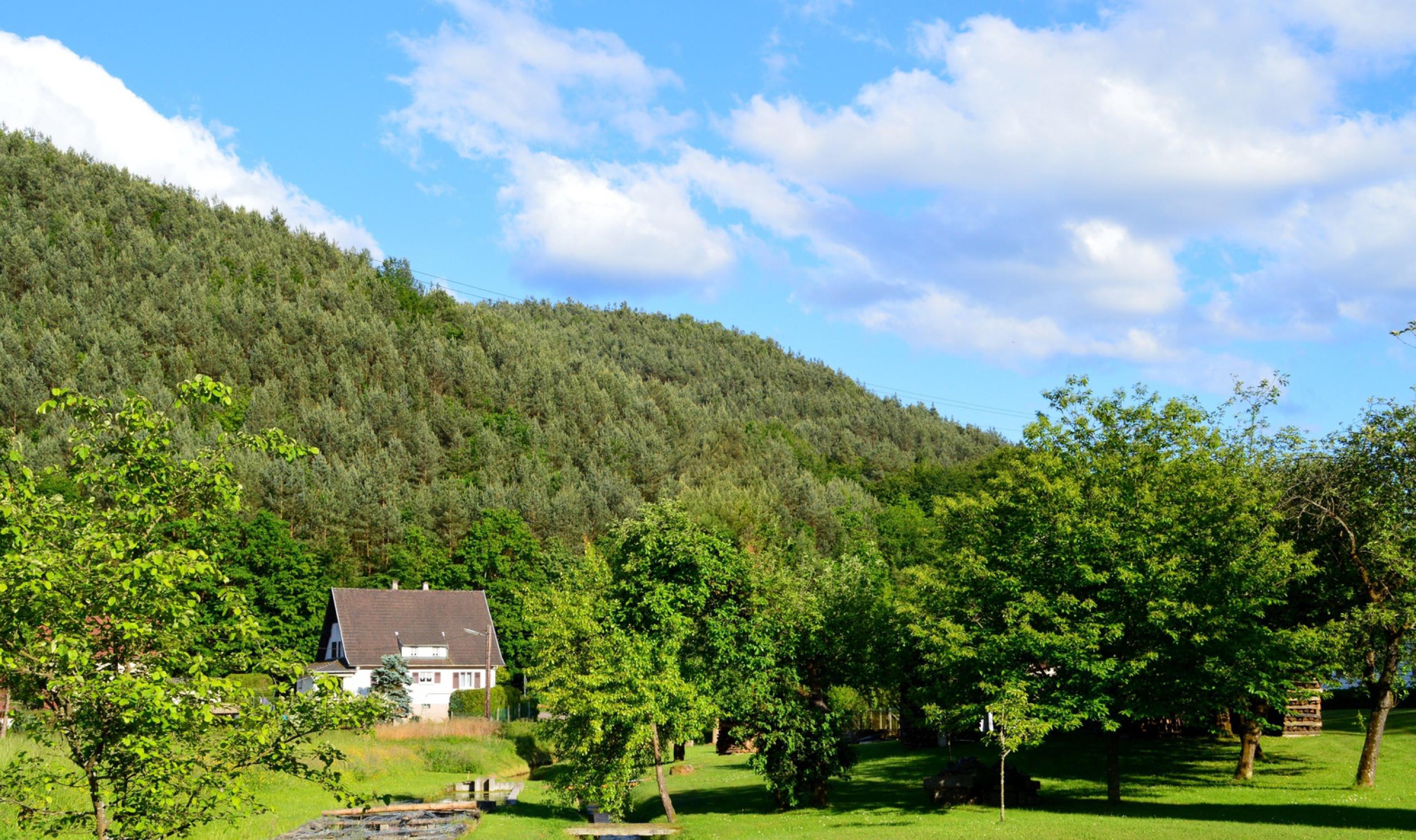 Gite piscine privée vosges du nord à Sturzelbronn près de Bitche et Niederbronn